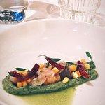 Vis voorgerecht: Ceviche van markeel met gamba's, avocado, limoenblad en rode ui