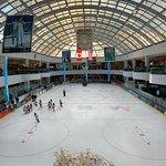 Ice Palace, West Edmonton mall