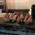 Fresh conch