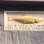 Den Gouden Harynck의 사진
