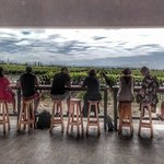 All day, small group, luxury wine tour with gourmet lunch