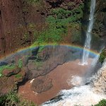 Private Tour: Ouzoud Falls Day Trip from Marrakech