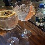 elmejor gin tonic de mendoza