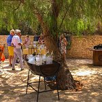 Private Day Trip to Vineyard Val d'Argan included Winetasting Lunch, per person