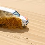 Half-Day Desert Safari from Abu Dhabi