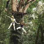 Flying Hanuman Zipline Experiencia