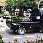 ภาพถ่ายของ White Orchid Ubud