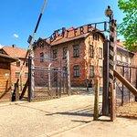 Auschwitz-Birkenau Camp Full-Day Guided Tour from Krakow