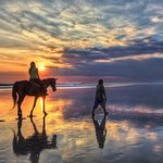 2 horas Sunset Horse ride taghazout