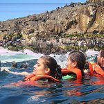 Adventure and adrenaline, swimming with SEA LIONS! & visit the Peruvian islands!