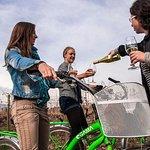Fiets- en wijnreis Halve dag Maipo-vallei