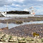 Private Oyster Tours in the Wild Atlantic Way