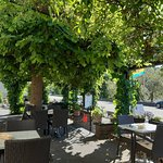 Gasthaus Traube Niederfell의 사진