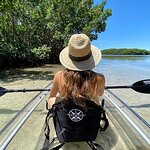Clear Kayak Tour of Shell Key Preserve and Tampa Bay Area