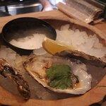Zum Empfehlen: Austern!