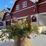 Smukt sted og under 100 m. fra Danmarks smukkeste strand.
