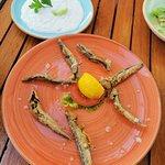 Fotografija – Dimitra Greek Restaurant