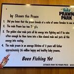 Huka Prawn Park照片
