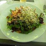 Der optisch schöne und knackige Salat als Starter.