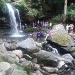 Grotto Falls Trail صورة فوتوغرافية
