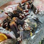 Fischplatte im Rohzustand