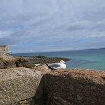 2013, honeymoon St. Ives Cornwall