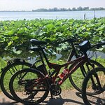 Mincio in Bike – slika