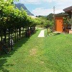 Bilde fra Bike&Wine Bar