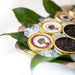 Finlandia Caviar