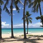 Red Coconut Beach Restaurant照片