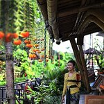 The Shed Bali