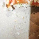 Il vicino pizza & pasta Photo
