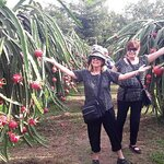 Life on the Mekong Delta Private Tour from Ho Chi Minh City