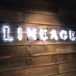 Foto van Lineage