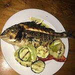 Ribar Jere Foto