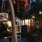Φωτογραφία: Εστιατόριο Διόνυσος