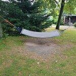 Hamak w ogrodzie.