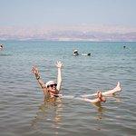 Best of Salt Lake City Including Great Salt Lake Sightseeing Tour