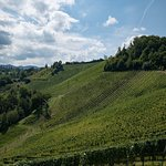 Weingasthof Sabathihof Foto