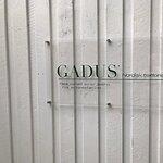 Bilde fra Gadus