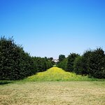 Parco di Monza