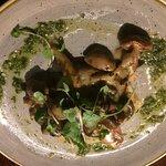 Mushrooms on toast, garlic sauce