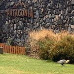 Фотография Cerveceria Patagonia
