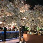 Billede af Sumo Restaurant Hall Toll