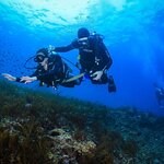 Hurghada diving for beginner