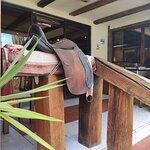 Just some saddles for the back entrance.