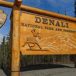 10 Hours Denali Winter Drive in Alaska