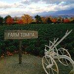 ภาพถ่ายของ Farm Tomita