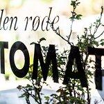 Billede af Den Røde Tomat