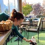 Pasha Cafe resmi